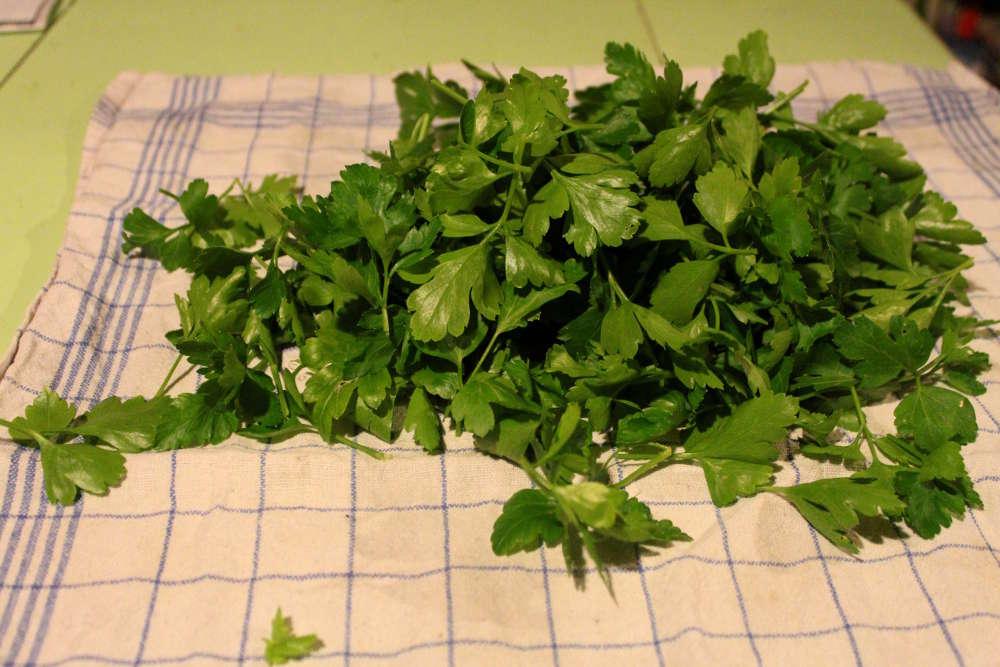 Comment congeler les herbes aromatiques persil menthe coriandre - Comment conserver du basilic ...