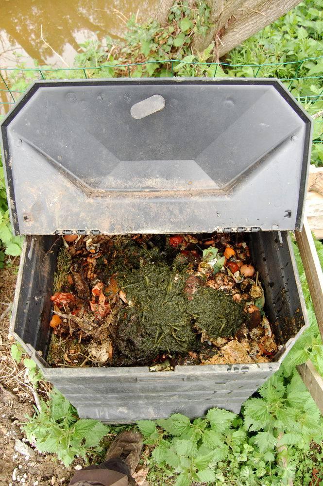 Purin d 39 ortie l 39 utiliser comme fertilisant et fortifiant au potager - Quand utiliser le purin d ortie ...